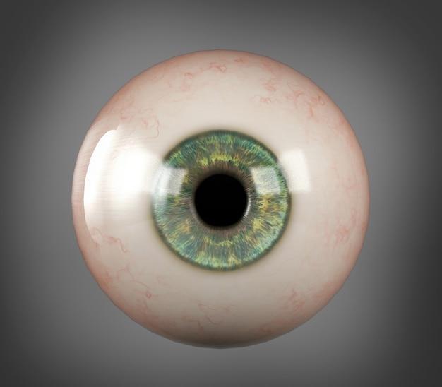 La pupila realista del iris azul del globo ocular humano aisló