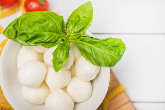 Queso mozzarella italiano tradicional con hojas de albahaca