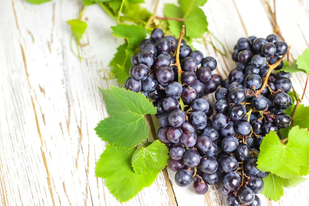 Racimo seco de uvas azules sobre blanco rústico