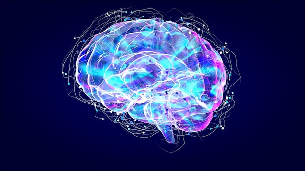 Radiografía cerebral, anatomía humana, neuronas ilustradas en 3d