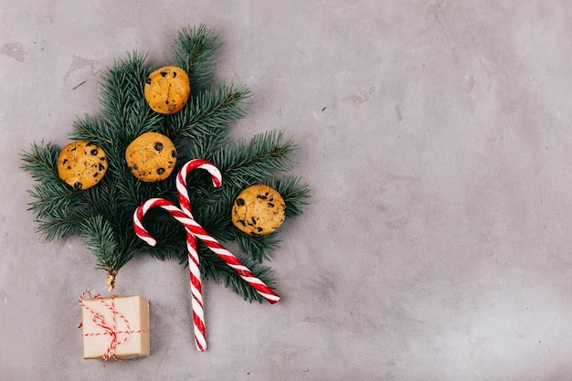 La rama del abeto con las galletas, los caramelos blancos rojos y la caja actual miente en fondo gris