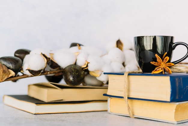Rama de algodón con pila de libros