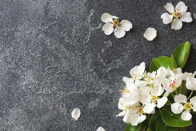 Rama floreciente de la primavera en fondo concreto gris