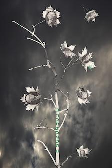 Rama con hojas de dólares contra las nubes. inestabilidad financiera