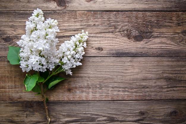 Rama de lila blanca sobre un fondo de madera