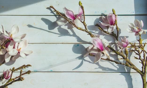 Una rama de lirios en una rústica pared de madera blanca