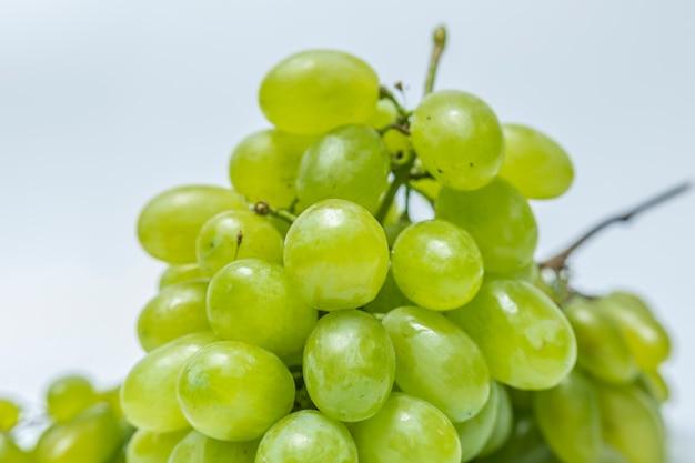 Rama orgánica color verde fruta