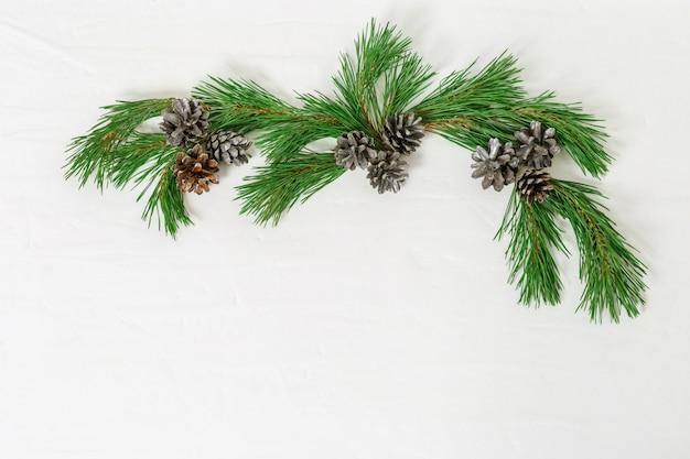 Rama de pino con piñas
