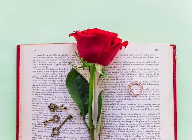 Rama rosa roja con anillo de bodas en el libro