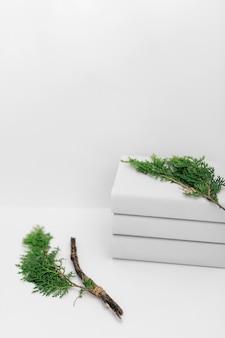 Rama de thuja en blanco apilado de libros sobre fondo
