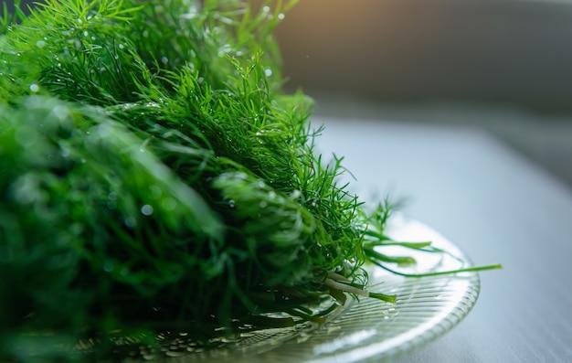 Ramas de eneldo preparadas para ensalada o congelación beneficios de las verduras frescas