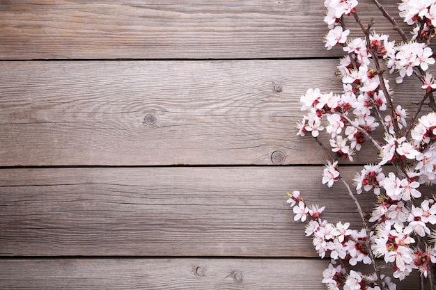 Ramas florecientes de primavera sobre fondo de madera gris.
