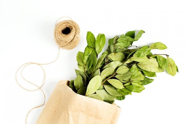 Ramas de hojas de laurel en bolsa de papel