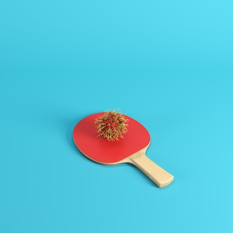 Rambután maduro entero en la paleta del ping-pong aislada en fondo azul