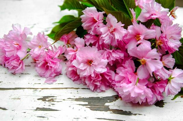 Ramifique con las pequeñas flores rosadas en el banco de madera blanco, cierre para arriba