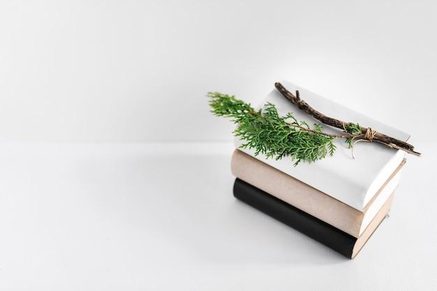 Ramita de abeto en la pila de libros sobre fondo blanco