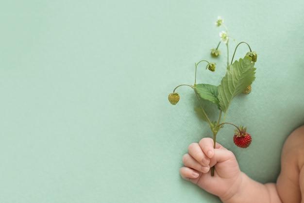 Ramita con bayas de fresas rojas en la mano de un bebé recién nacido sobre un fondo turquesa. cosecha de verano de vitaminas. alergia a frutas en niños. copia espacio