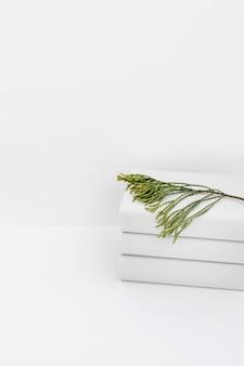 Ramita de cedro apilada de libros blancos sobre fondo blanco