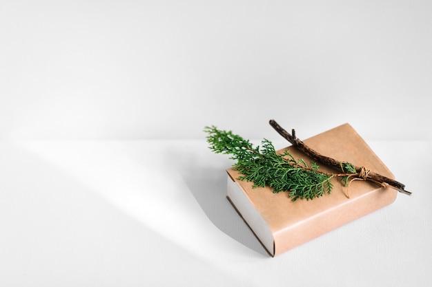 Ramita y rama de thuja en libro de tapa marrón sobre fondo blanco