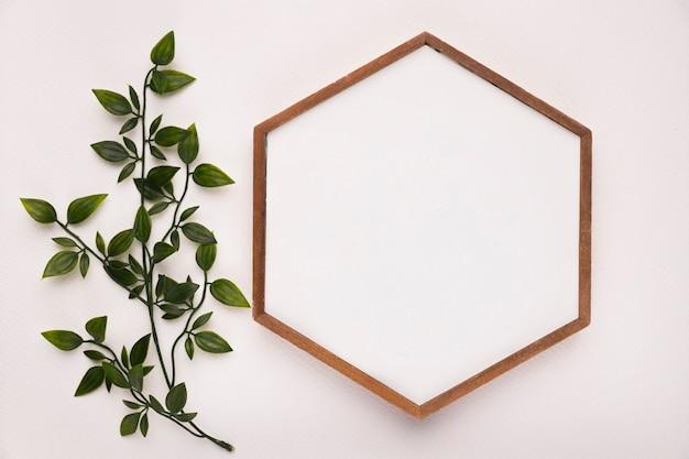 Ramita verde con hojas cerca del marco de madera hexagonal sobre fondo blanco.