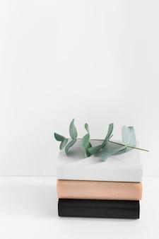 Ramita verde en pila de libro diferente aislado sobre fondo blanco