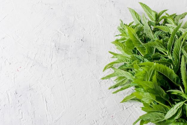Ramitas de menta frescas y orgánicas sobre la mesa de luz.