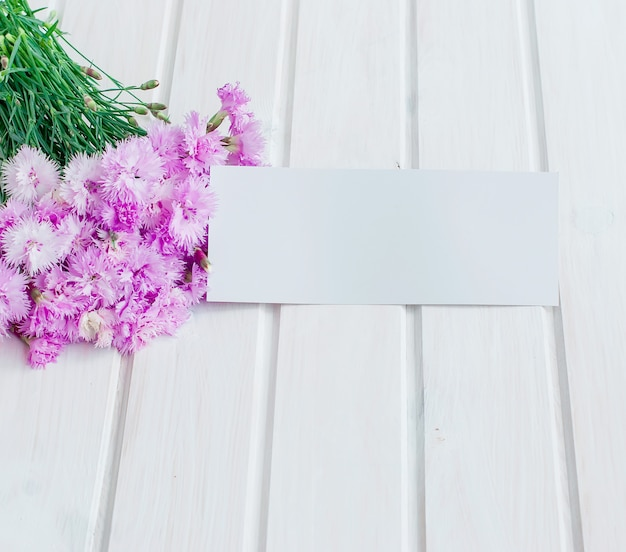 Ramo de acianos de jardín sobre un fondo blanco de madera
