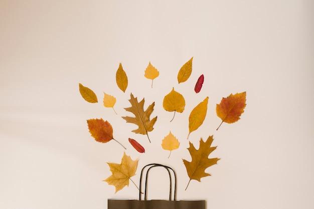 Ramo brillante de hojas caídas de otoño en una bolsa de papel marrón de regalo