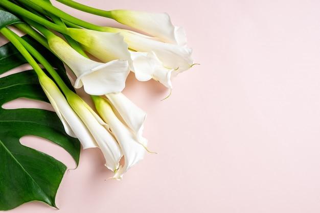 Ramo de calas blancas y hojas de monstera sobre fondo rosa con espacio de copia, vista superior