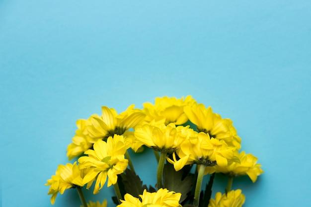 Ramo de flores amarillas sobre fondo azul.
