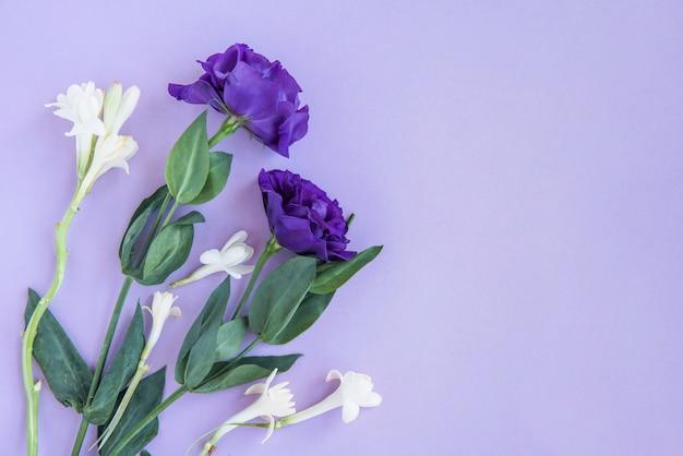Ramo de flores blancas y azules.
