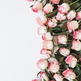 Ramo de flores color de rosa rosa sobre superficie blanca