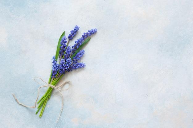 Ramo de flores muskari en el fondo azul cielo