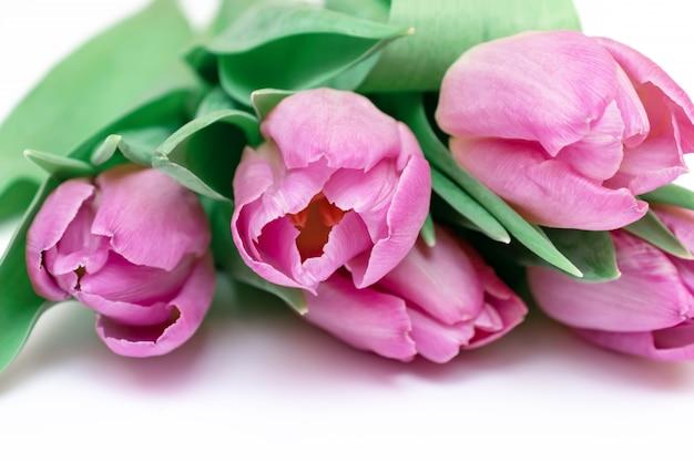 Ramo de flores de la primavera, tulipanes rosados en el cierre blanco del fondo para arriba