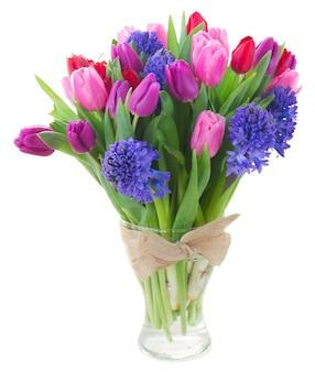 Ramo de flores de tulipán y jacinto azul aislado en blanco