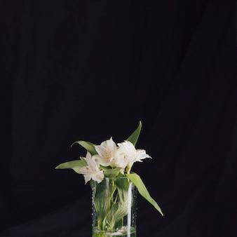 Ramo de hermosas flores blancas frescas en florero.