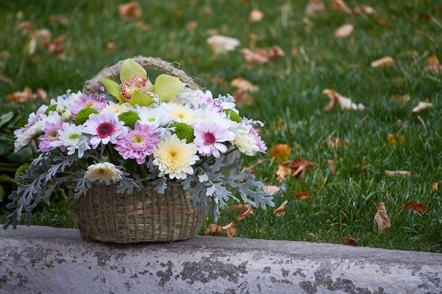 Ramo otoñal de crisantemos multicolores en una cesta sobre un fondo de hierba verde