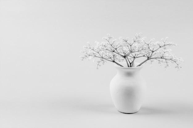 Ramo de pequeñas flores blancas delicadas de la baya del saúco en un jarro blanco con el espacio de la copia