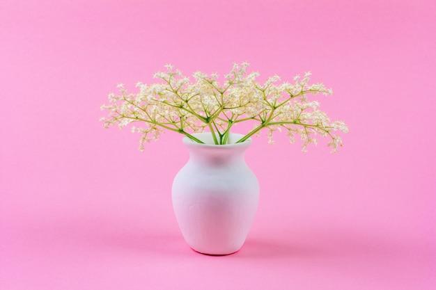 Ramo de pequeñas flores blancas delicadas de saúco en una jarra blanca sobre un pastel rosa
