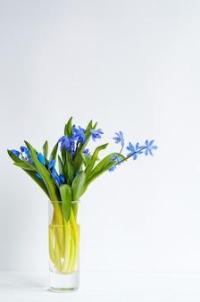 Ramo de tiernas flores azules en un vaso con agua en blanco