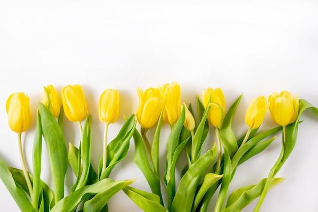 Ramo de tulipanes amarillos sobre un fondo blanco con un lugar para agregar texto
