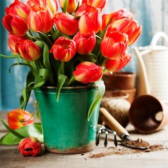 Ramo de tulipanes hermosos y herramientas de jardín en mesa de madera