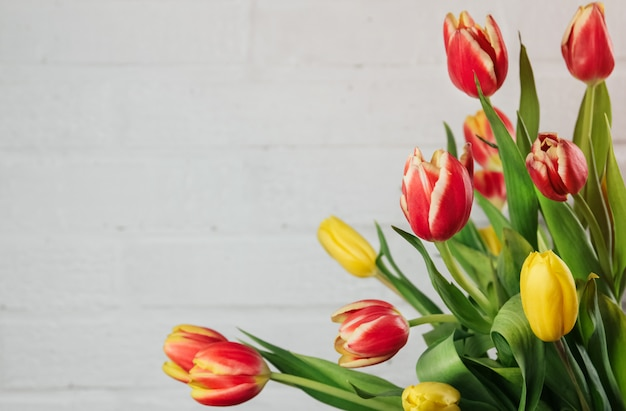 Ramo de tulipanes rojos, amarillos y rosados sobre un fondo de pared gris claro copia espacio.