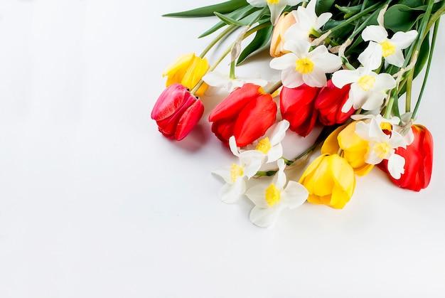 Ramo de tulipanes rojos, narcisos y regalo sobre el fondo blanco.
