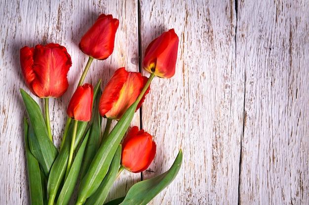 Ramo de tulipanes rojos sobre fondo de mesa de madera blanca con espacio de copia