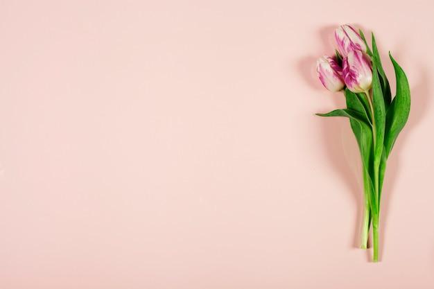 Ramo de tulipanes rosa sobre fondo rosa