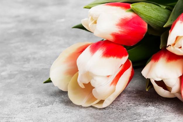 Ramo de tulipanes rosados blancos sobre un fondo gris. copia espacio