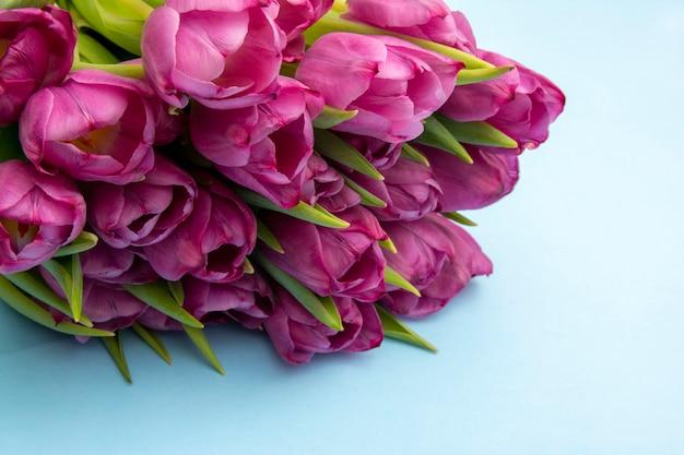 Ramo de tulipanes rosados / fondo del día de pascua. ramo de tulipanes sobre un fondo azul, banner web