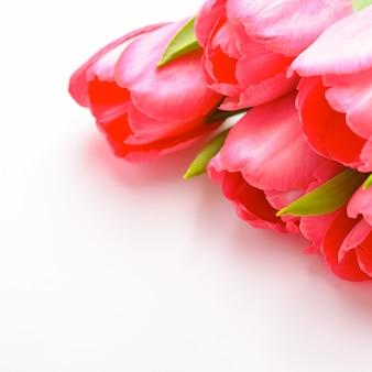 Ramo de tulipanes rosados frescos en una tabla blanca, aislado.