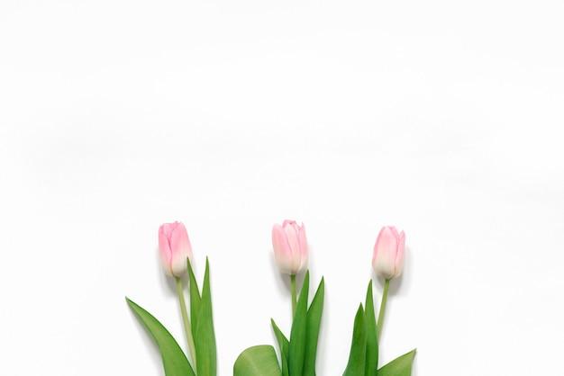 Un ramo de tulipanes rosados